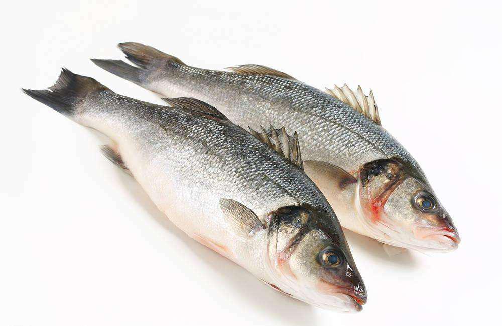 鲈鱼(时令海鲜拍前咨询客服)